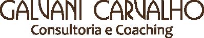 Galvani Carvalho – Consultoria e Coaching – Palmas-TO